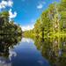 Paddling through Shingle Creek reflections 2