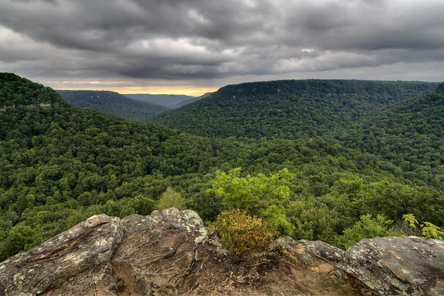 Buzzard's Roost, Fall Creek Falls State Park, Van Buren County, Tennessee 3