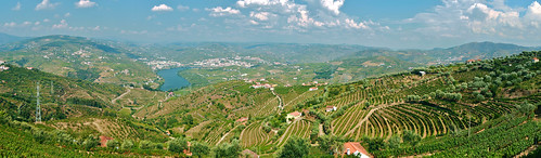 Douro Valley | by frans16611