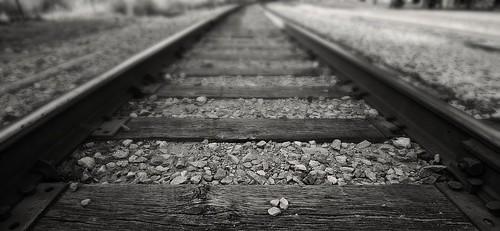 Tracks | by rogersmj