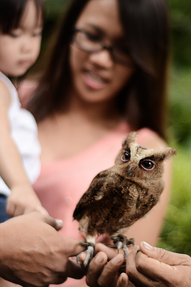 Philippine Eagle Nature and Research Center