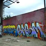 Elmer x Gasm