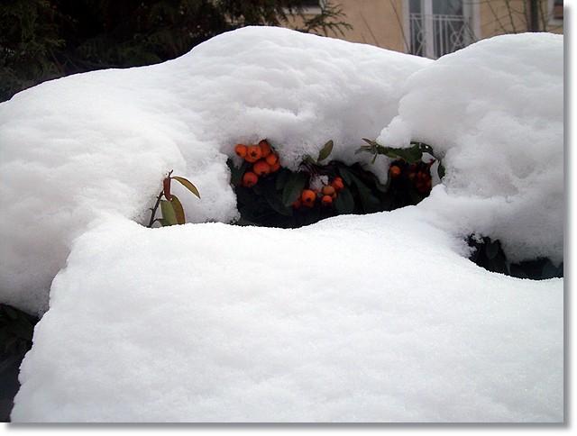 Under cover-Takaró alatt...