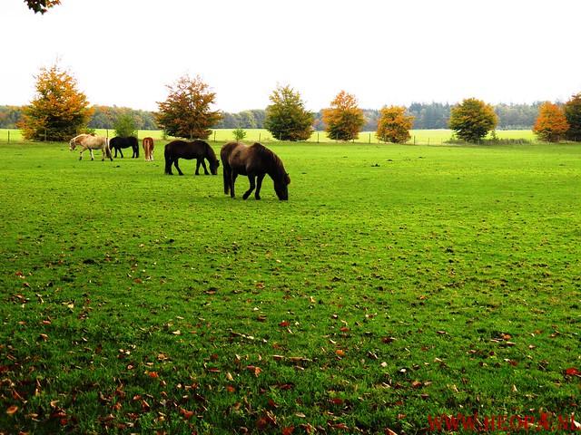 20-10-2012     Wedeblick-   Driebergen        25 Km (153)