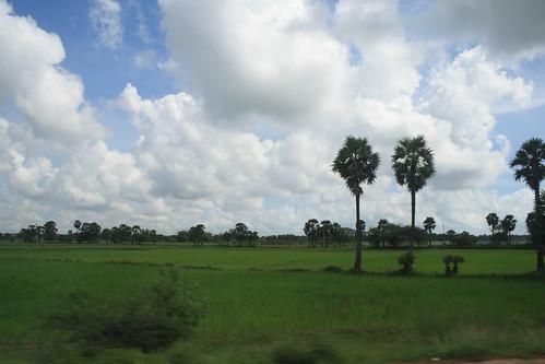 trees india clouds moving plains tamilnadu nagapattinam ind