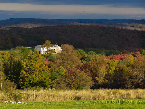 autum color fall grass landscape leaves mountainhouse mountains pa travel trees lakewood pennsylvania unitedstates