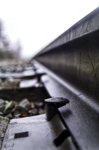 railroad wet grey steel tie damp moist autosearsmc28mmf28macro pentaxk30