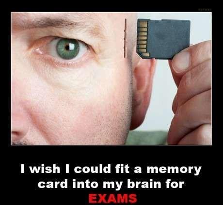 memory card brain