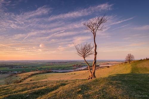 sunset bedfordshire hills pegsdon leefilters pumpedcalvesfromstompingupthathill