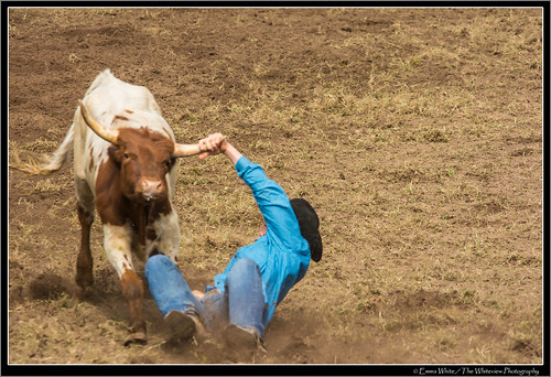 2014_Rodeo_20140412_Dungog_7341 | by Seeking Nature | Aus