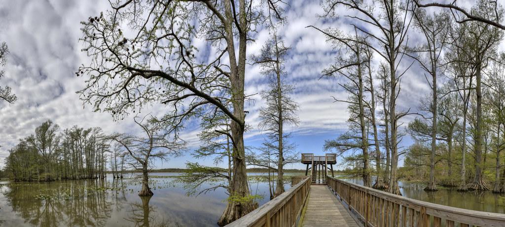 Reelfoot Lake 2, Grassy Island Unit, Reelfoot National Wil… | Flickr