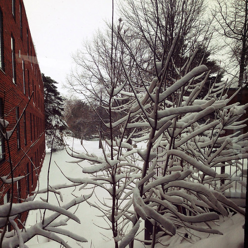 Spring at Northern Michigan University