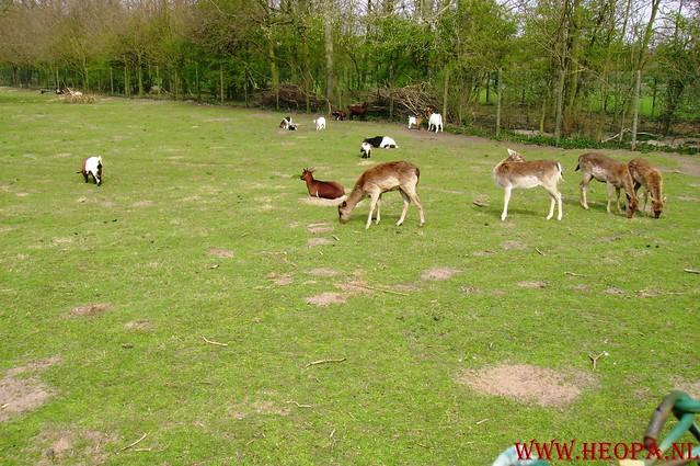 7 E Zemansloop 19-04-2008 40 KM (33)