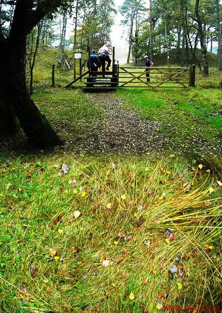 20-10-2012     Wedeblick-   Driebergen        25 Km (15)
