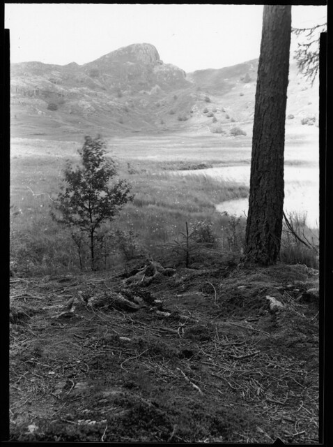 Blea Tarn with Side Pike