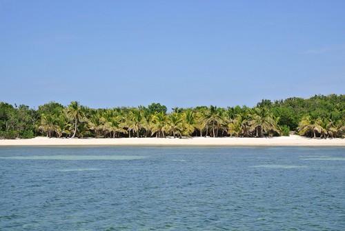 Malt Lowes Cay
