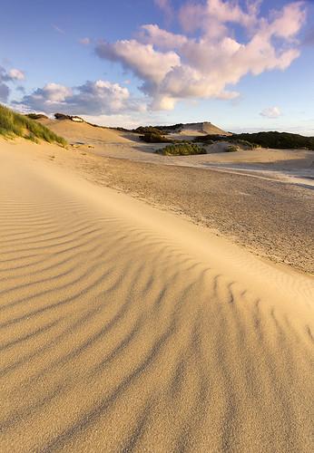 netherlands sand dunes nederland urbannature ripples duinen thehague pristine kijkduin triffids zuidhollandslandschap westduinpark canonefs1022 haguethe westdunepark