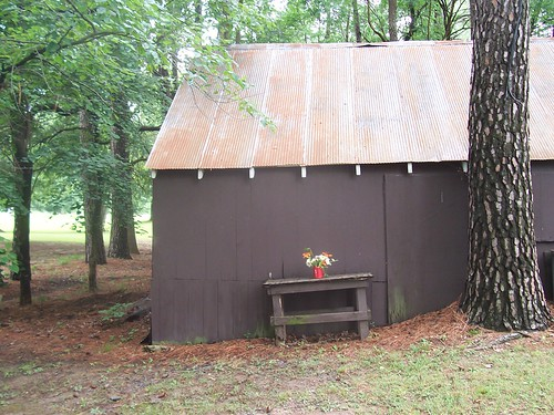flowers landscape shed