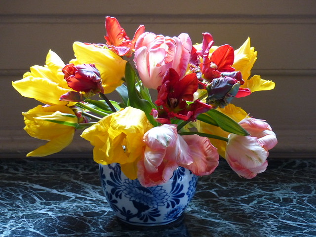 Dutch Still Life - Tulips