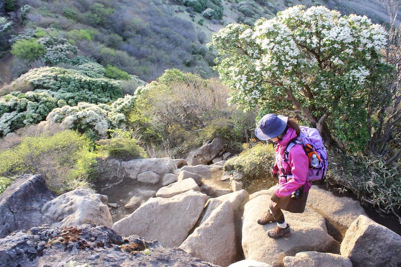 2014-05-04_00319_九州登山旅行.jpg