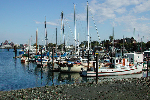 Sailors Cove Marina, Esquimalt, Victoria, Vancouver Island, British Columbia, Canada