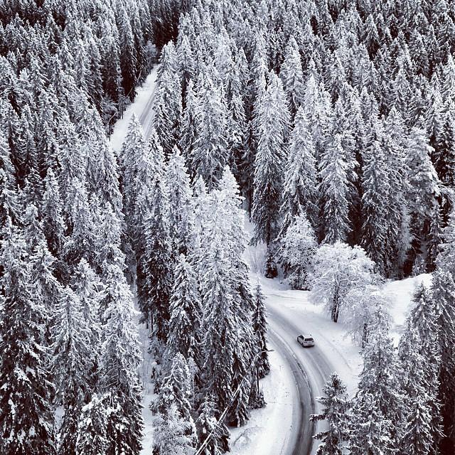 Puijo | Winter Road