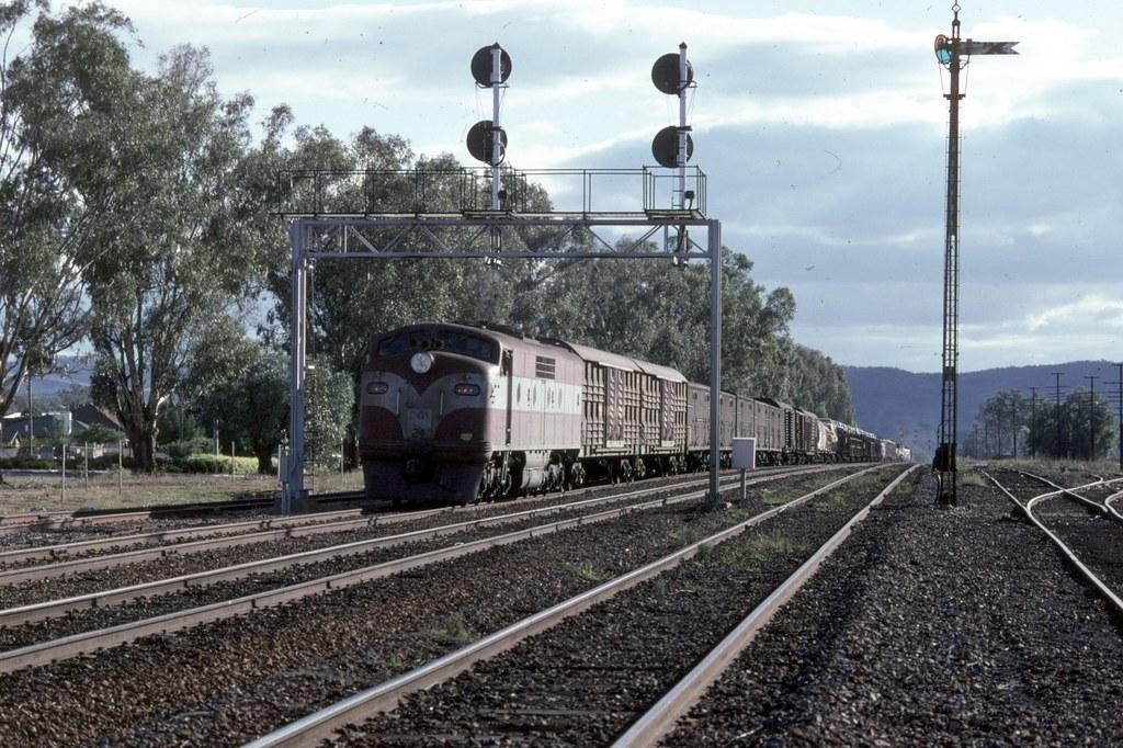 GM24 at Alumatta Loop by Alan Greenhill