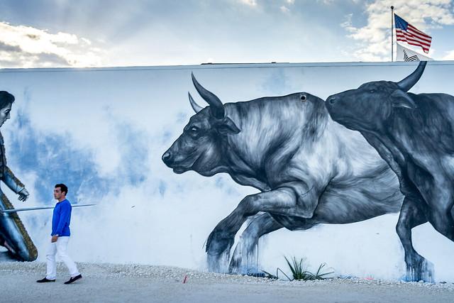 Miami Bulls