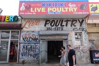 Kikiriki Live Poultry | 334 Linden St | Bushwick | Brooklyn | NYC | 2016