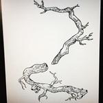 Drawing some parts for next project. #tree #draw #drawing #photoshop #ink #noahsart  プロダクトデザインの一部。これから沢山のパーツを重ねていきます。店頭に並んだ時にインパクトを与えられるような絵にします!!#デザイン #イラスト #インク