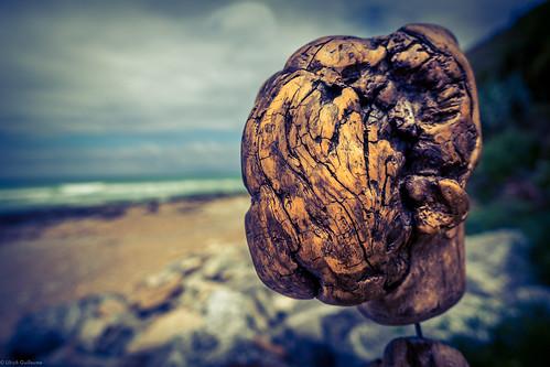 Driftwood head