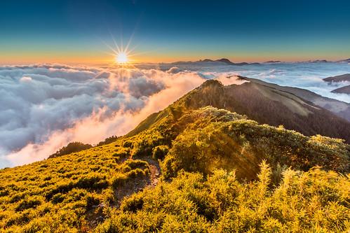 autumn sunset sun mountain fall landscape golden day wind taiwan windy sunny nopeople clear sunflare 合歡山 秋天 nantou renai 芒草 主峰 日芒