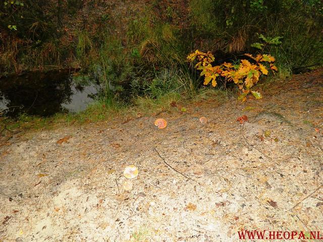 20-10-2012     Wedeblick-   Driebergen        25 Km (61)