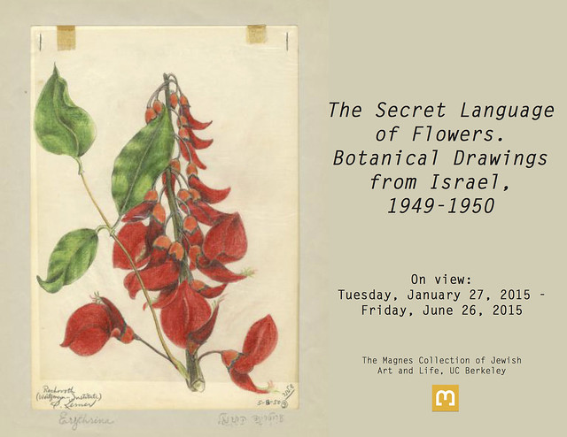 The Secret Language of Flowers: Botanical Drawings from Israel, 1949-1950 (2015)