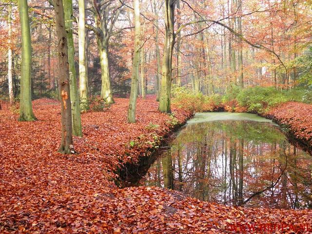19-11-2011          Wassenaar        25.5  Km  (46)