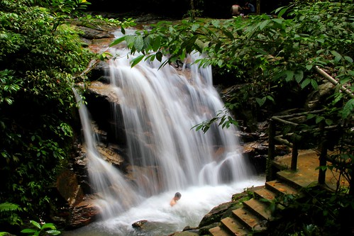 forest waterfall natural malaysia
