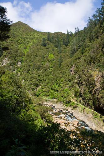 Karangahake Gorge   by Benjamin Beck