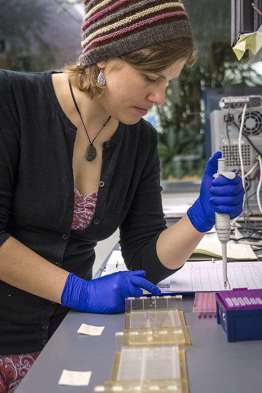 _WCB7420 DNA sequencing SRC