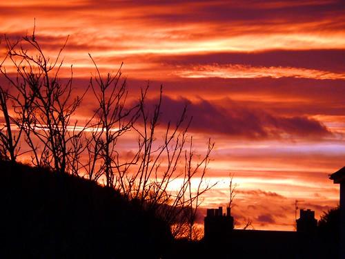 nature sunrise outdoors perth