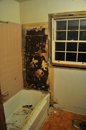 2012-02-04 Bathroom demolition 17 | by ericdodds