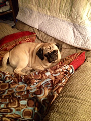 """TuffGuy just slipped right in & stole my seat! """"Who me?!"""""""