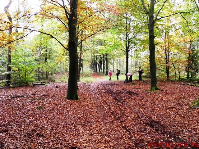 20-10-2012     Wedeblick-   Driebergen        25 Km (94)