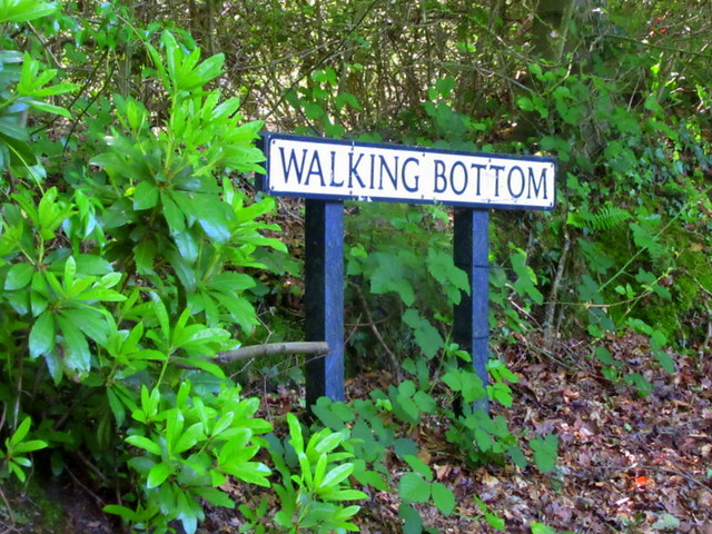 Walking  Bottom .. ..