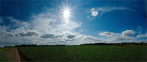 road sky sun field clouds raw michigan pano roxand mulliken soybeans stiched joeldinda 1v1 182365