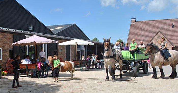 Oostburg Trekpaardenwereld