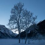 Skitour Silberen Jan 17'