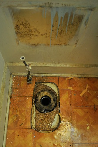 2012-02-04 Bathroom demolition 11   by ericdodds