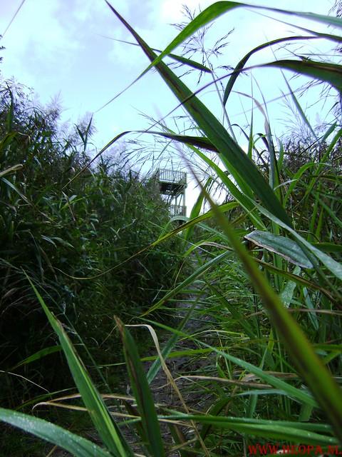Veluwse Walkery 06-09-2008 40 Km (18)