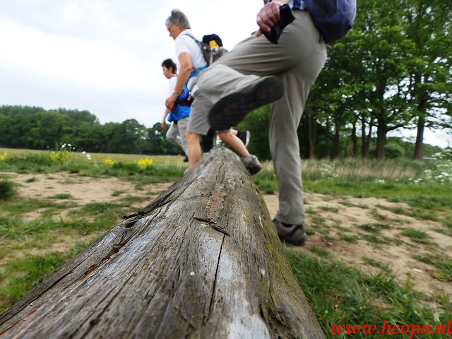 2016-05-18    St'Michielsgestel  26 Km  (62)
