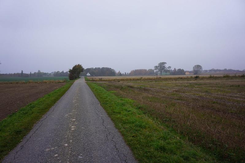 Kaedeby-Haver-efteraarsstemning-2015 (5)